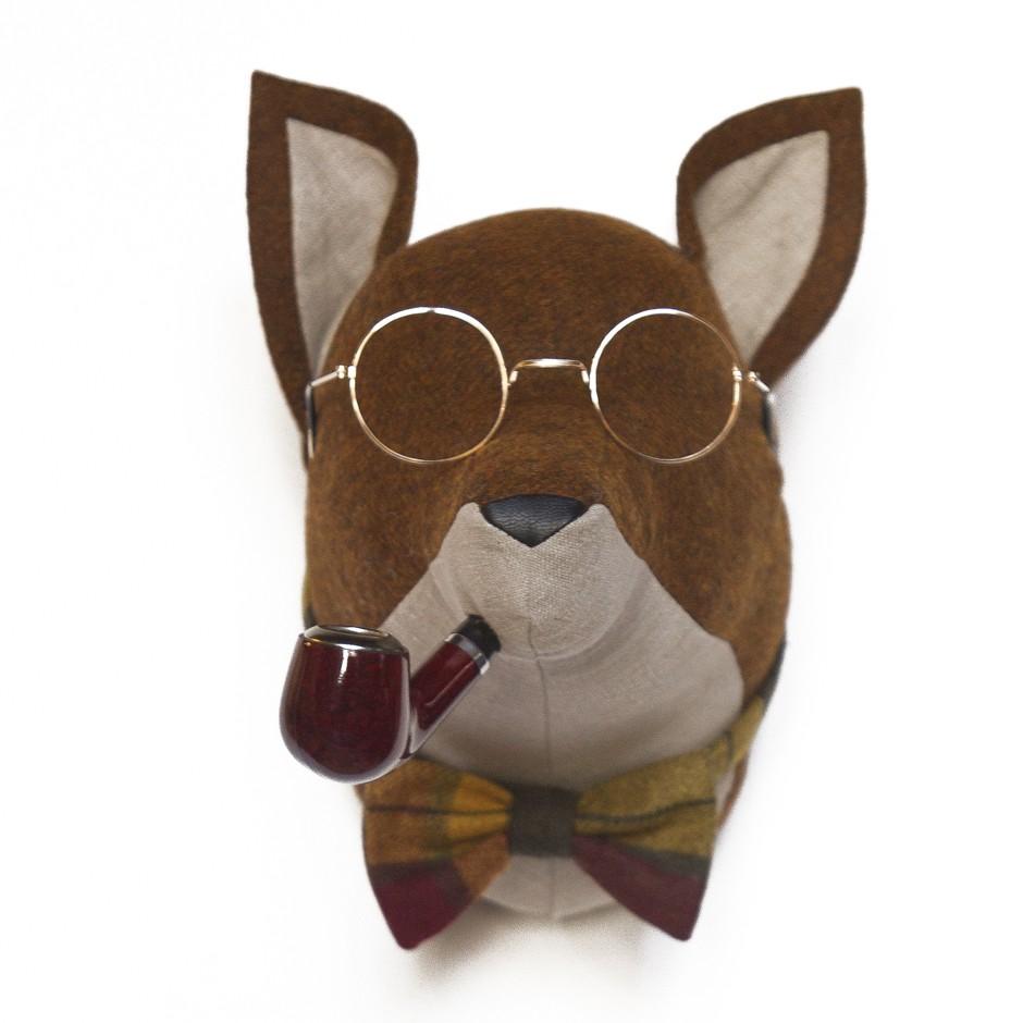 Soft Fox - Henry